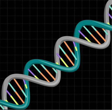Dna vector free vector download (59 Free vector) for