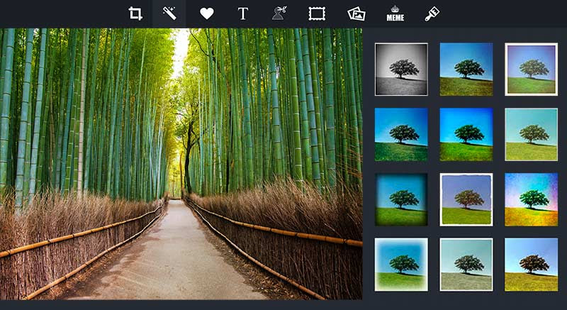 Desktop Photo Editing Tools - piZap