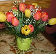 wilma's flowers