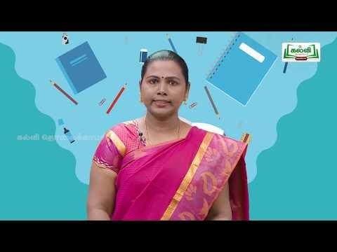 Class 10 English Unit 4 Vocabulary Compound Words Kalvi TV - TM
