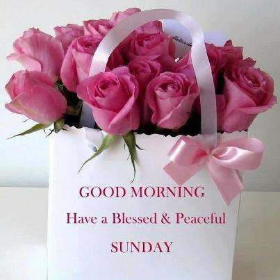 Good Morning Flowers For Sunday Goodmorningpicscom