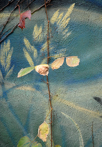 Annie's garden revisited