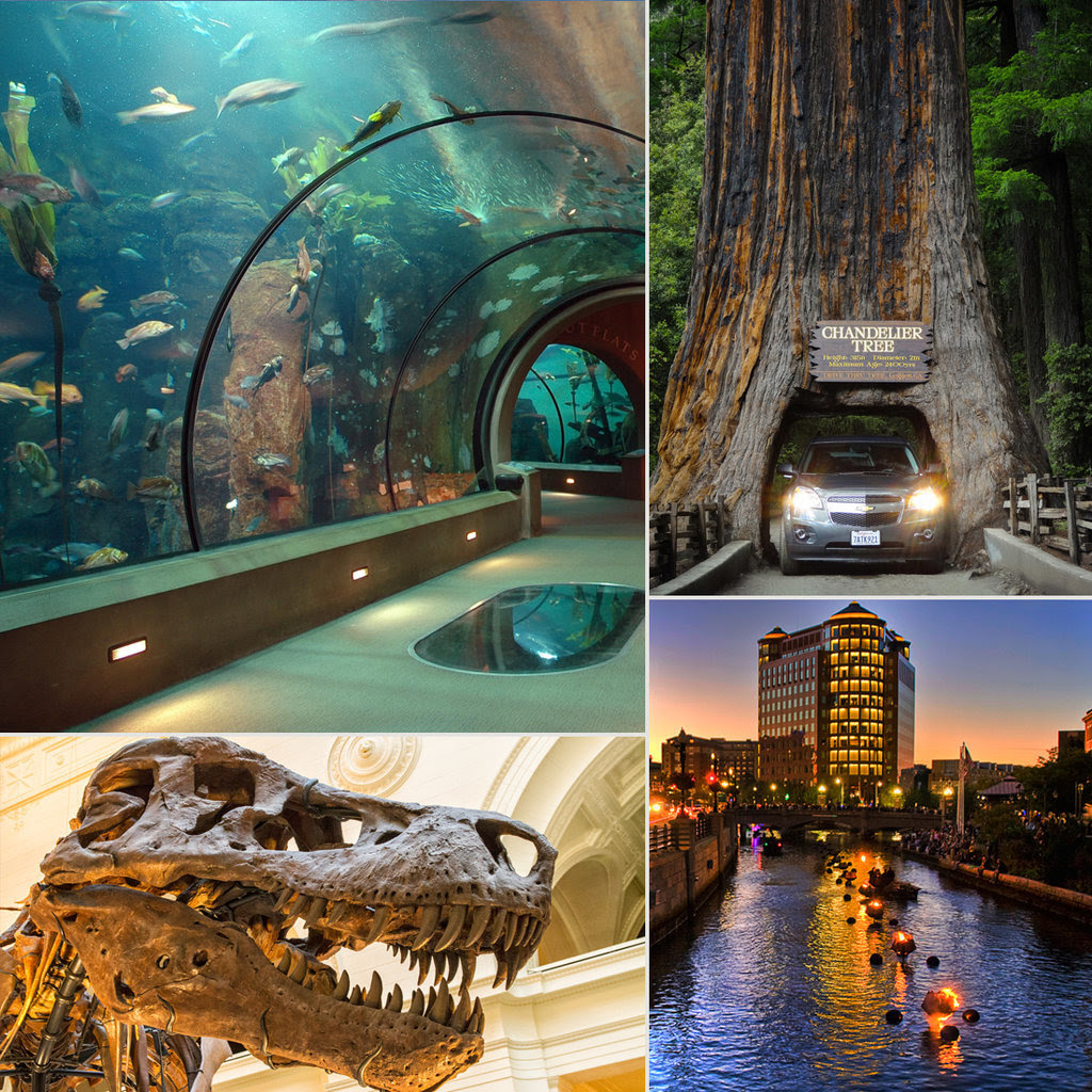 Attractions For Kids and Families Around USA | POPSUGAR Moms