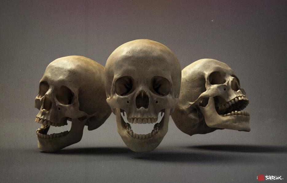 http://demo.shtl.org/images/Skull_study__wip_03_by_shtl.jpg