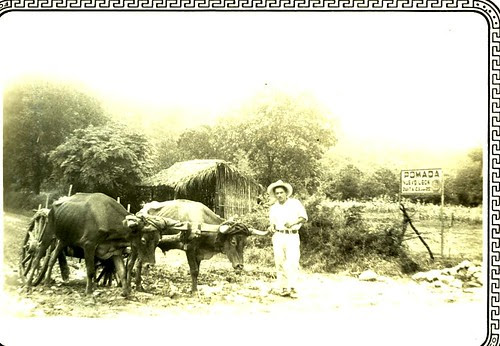 mexican farmer in 1934