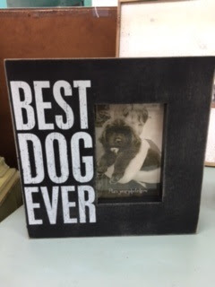 Wwwnottooshabbynjcom Love And A Dog Frame