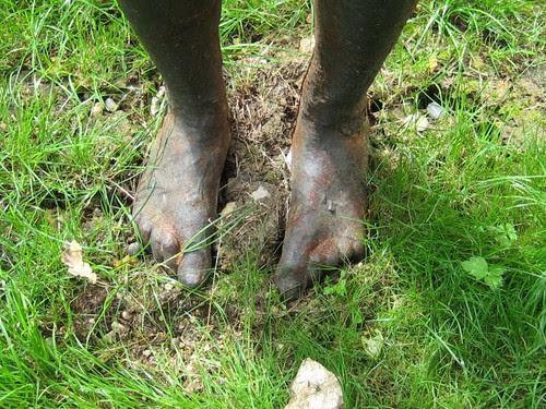 Gormley feet
