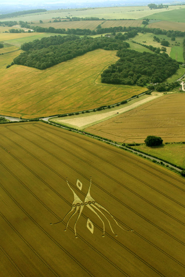 "The 18 Most Beautiful Examples Of ""Crop Circles"" In Pictures"
