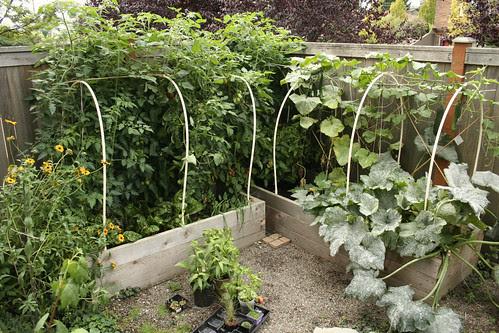 The Garden Oct 1st