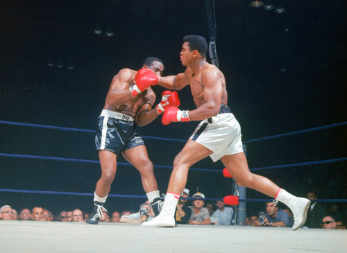 vintagesportspictures:<br /><br />Muhammad Ali rocks Sonny Liston with a right cross (1965)<br />
