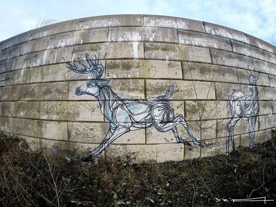 murales-callejeros-animales-lineas-geometricas-dzia (3)