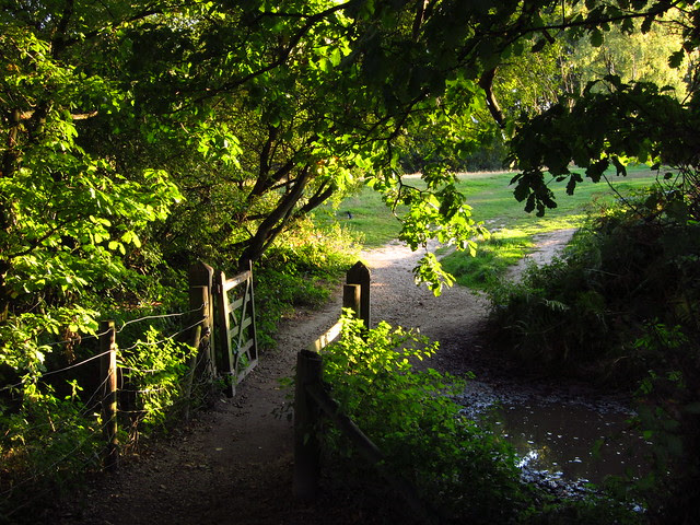 Gate to the West Meadow