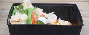 compostagem doméstica 1