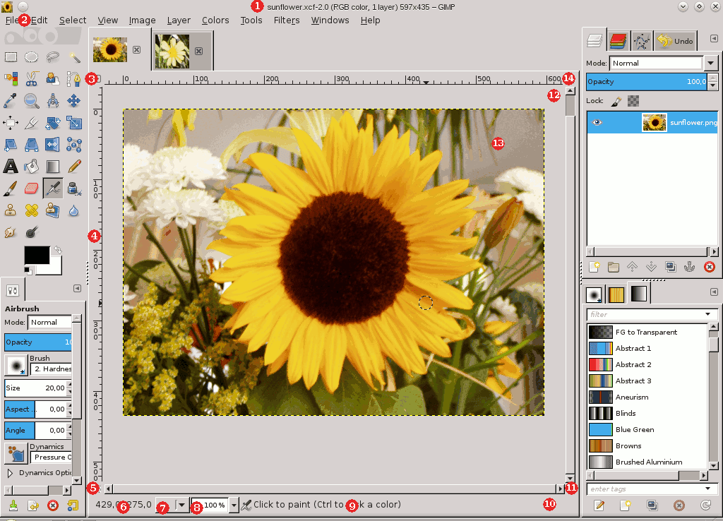 The Image Area in Single-Window Mode