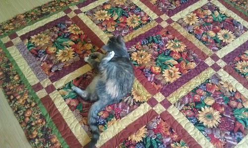 Aunt's quilt with cat