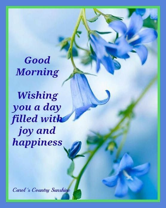 Good Morning Wishes Pictures Photos And Images For Facebook