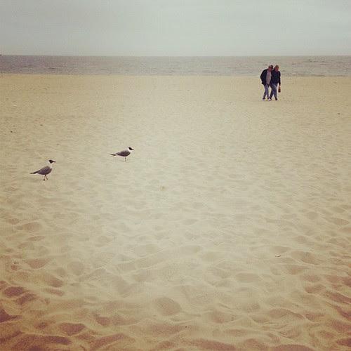 踏灘。 Day_032
