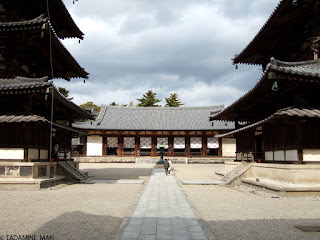 Surrounded with old buildings, at Horyuji Temple, in Nara