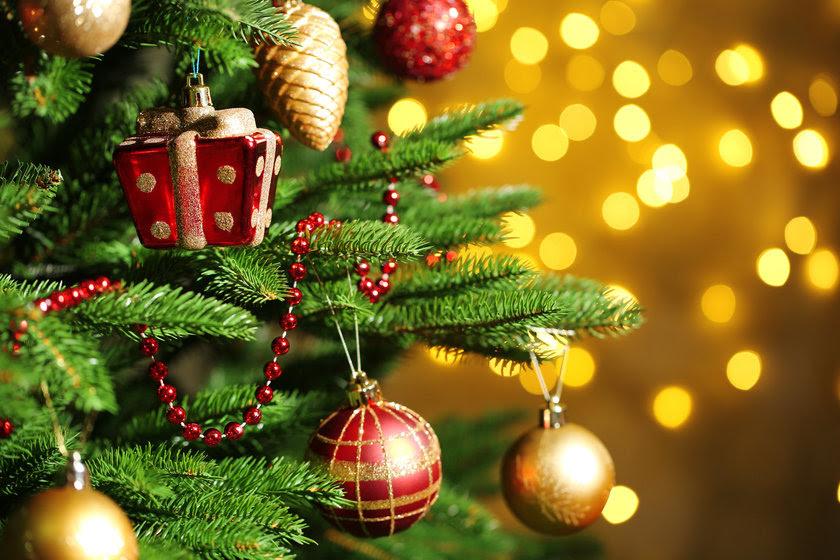 Resultado de imagem para Natal