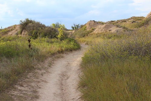 IMG_1754_Wagon_Trail_Over_Mitchell_Pass_at_Scotts_Bluff_National_Monument