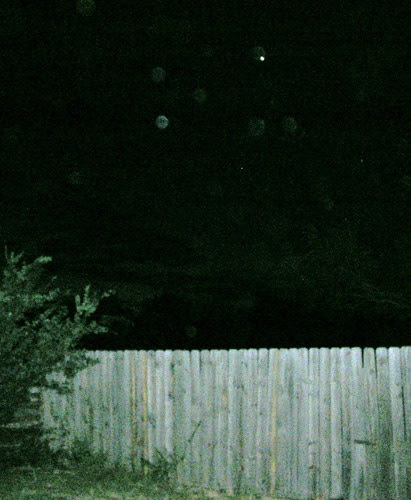 Night sky with bugs