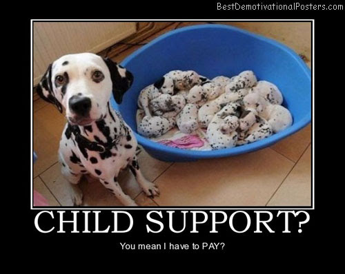 Child Support Demotivational Poster