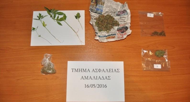 Συνελήφθη 54χρονος για καλλιέργεια ναρκωτικών στην Αμαλιάδα