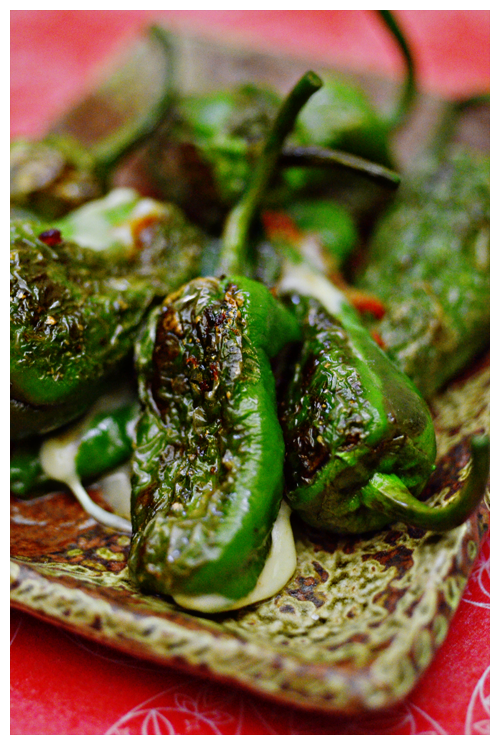 Cheese Stuffed Padron Peppers© by Haalo