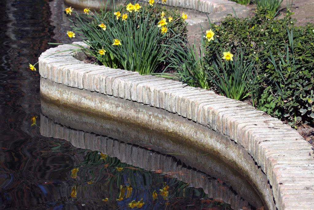 Un paseo por las Jardines de Aranjuez el 18 de marzo por la tarde