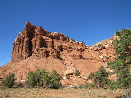 IMG_3411_Capitol_Reef_National_Park