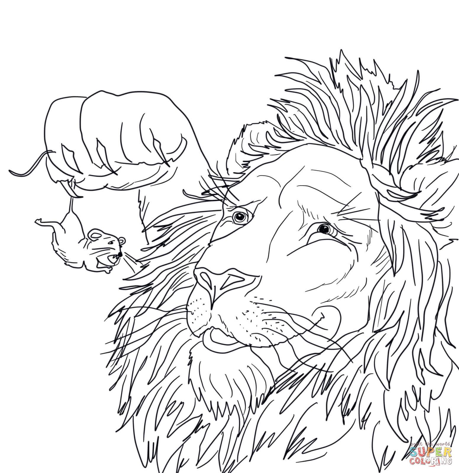 Ausmalbild: Der große Löwe fängt eine kleine Maus ...