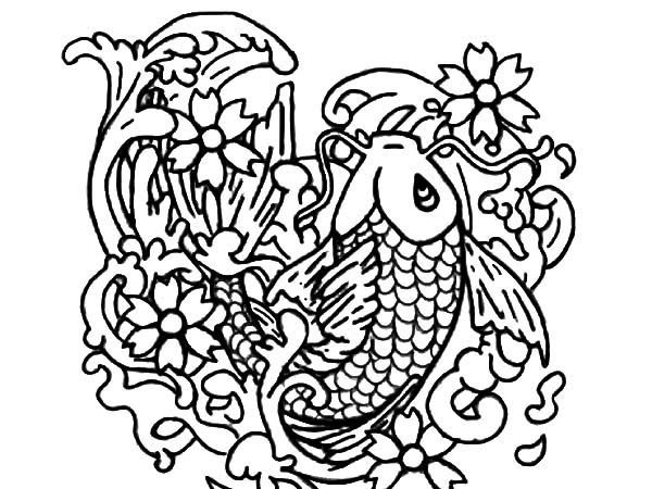 Koi Fish Outline Drawing at GetDrawings | Free download
