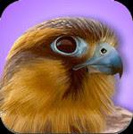 iBird Explorer Pro