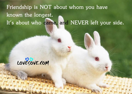 Lovesovefriendshipquote025 Lovesovecom 2018