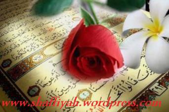 http://shaffiyah.files.wordpress.com/2010/04/2010-04-27-08-47-19.png?w=342&h=226#038;h=226