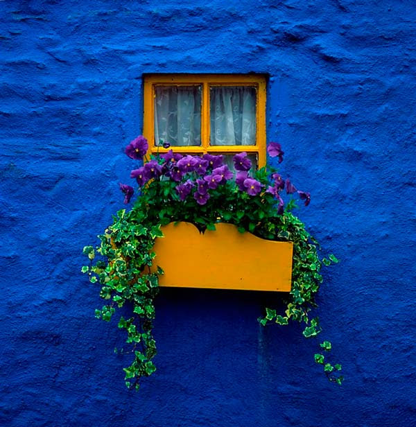 perierga.gr - Kinsale: Τόσο πολύ χρώμα σε ένα χωριό!