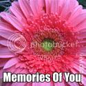 memoriesofyou