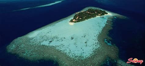 Embudu Village Maldives   Book Honeymoon & Holiday Now!