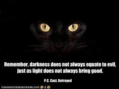 Remember Darkness Does Not Always Equate To Evil Just As Light