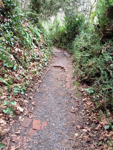 SW1 Trail