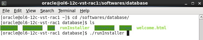Oracle 12c on Linux 6