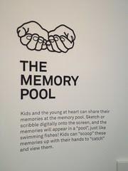 IMG_5696 the memory pool