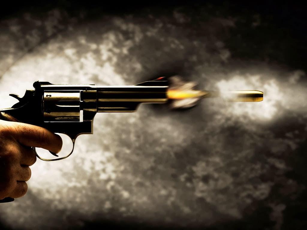 Resultado de imagem para armas de fogo