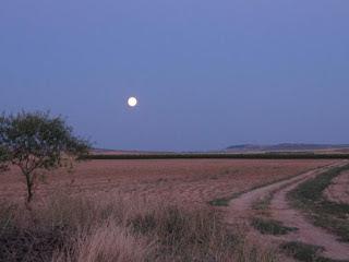 Luna de Lerin