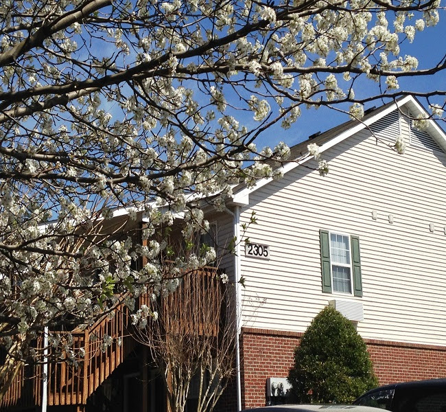 Apartments Based On Income Greensboro Nc