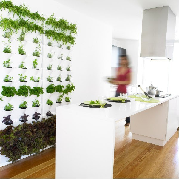 Indoor/Outdoor Living Wall Planters - contemporary - indoor pots ...