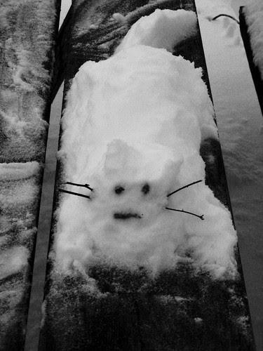Snow Cat # 1