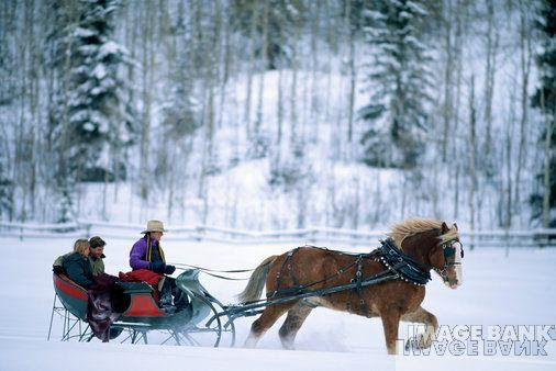 Christmas Images One Horse Open Sleigh Wallpaper And Background