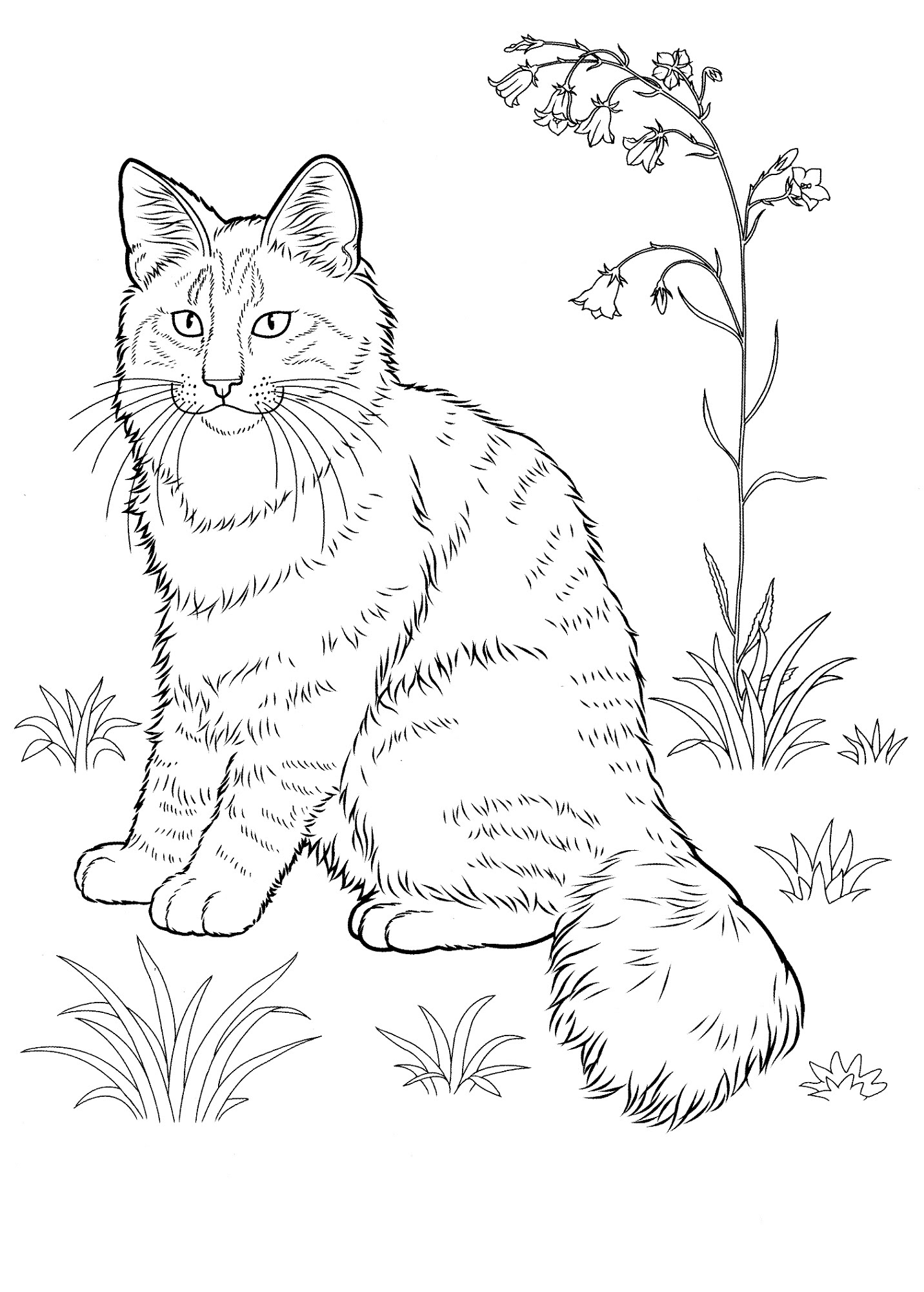 Adorable Cat Coloring Pages | Learning Printable
