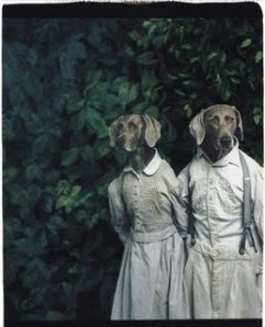 http://flowerchildphotos.files.wordpress.com/2009/11/william-wegman-hansel-und-gretel.jpg?w=241&h=300